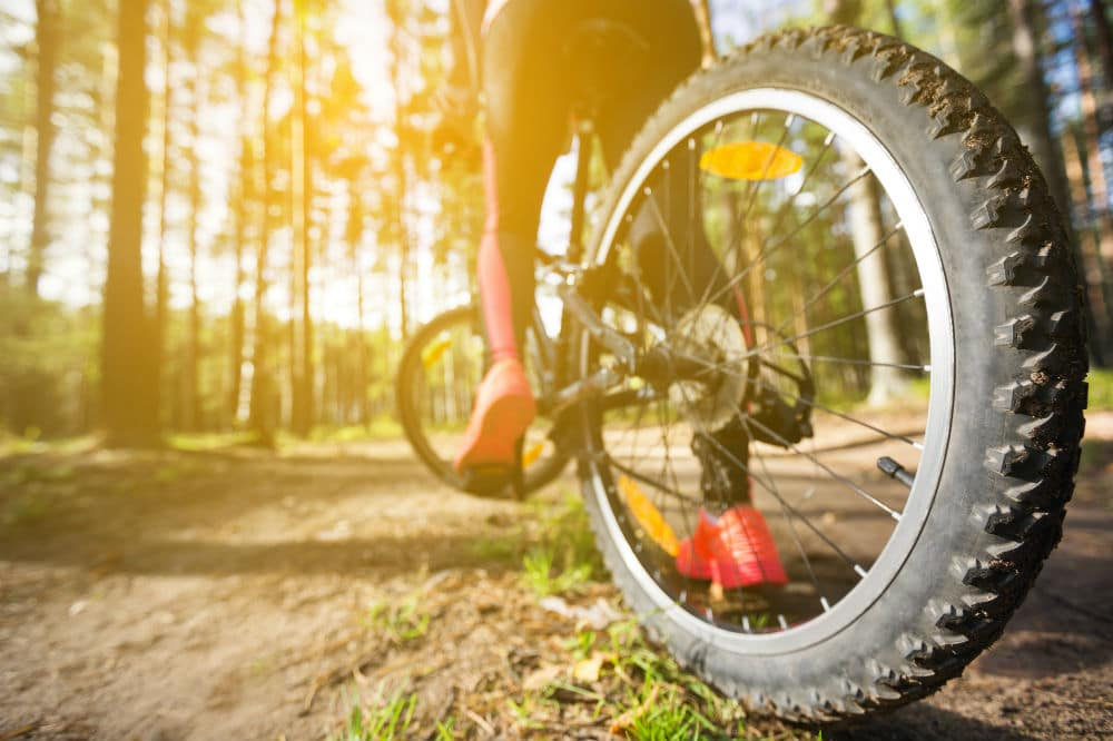 How to Choose MTB Shoes
